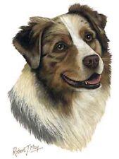 Australian Shepherd Dog Robert May Art Greeting Card Set of 6