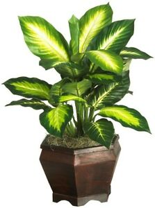 Artificial Plant 20 in. Tall Golden Dieffenbachia Silk Plant with Wood Vase