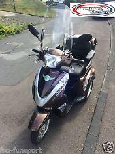 Elektromobil-mit Anhängerkupplung-Seniorenmobil-Dreirad-Scooter-Elektrorollstuhl