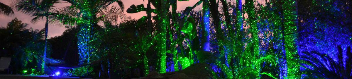 laserlightdelight