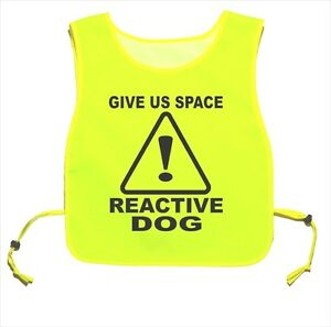 Give Us Space Reactive Dog Yellow tabard Dog Walking Training 01
