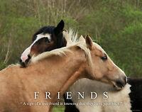 Horse Motivational Poster Art Print Western Cowgirl Wall Decor Friends Gift