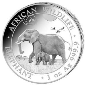 Somalia - 100 SH. 2021 - Elefant - ANA Chicago 2021 Privy Mark - 1 Oz Silber ST