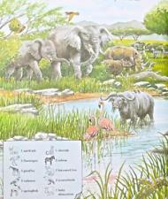 A Picture Perfect World -A Hide in Picture Nature Book Search Find Hidden Object