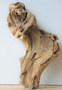 Treibholz Schwemmholz  Driftwood 1 knorrige Wurzel Terrarium Dekoration 37 cm 14