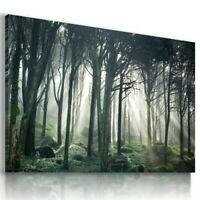 SUNRISE SKY FANTASY FOREST TREES View Canvas Wall Art Picture L569 UNFRAMED