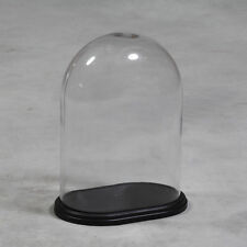 GLASS DISPLAY CLOCHE DOME BELL JAR WITH WOODEN BASE