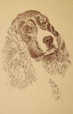 English Springer Spaniel Dog Art Portrait Print #236 Kline adds dog name free.
