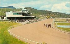 Vintage Postcard; Ruidoso Downs NM Horse Racing Track & Grandstands, Lincoln Co.