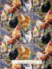 Rooster Hen Fabric - Farm Bird Chicken Coop CP59988 Hen Pecked Wild Wings - Yard