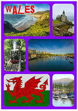 WALES, UK - SOUVENIR NOVELTY FRIDGE MAGNET - FLAGS / SIGHTS - NEW - GIFTS