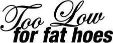 """Too Low For Fat Hoes JDM Decal Sticker Car Truck Window- 6"""" Wide White Color"""