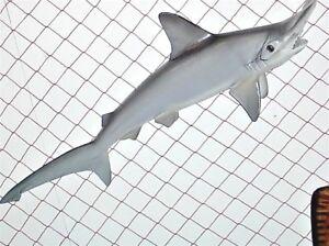 "26"" SMOOTH HAMMERHEAD SHARK  -    unpainted fiberglass reproduction blank"