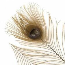 """25 B Quality Dyed Wheat Color Peacock Eye Feather Stems 12-14"""" - US Seller"""