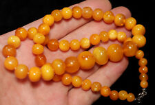[T] Natural Genuine Butterscotch Egg Yolk Baltic Amber Necklace