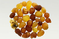 Lot of 34 Natural Raw Rough Rare Drops Nugget Genuine BALTIC AMBER 15g s70202-10