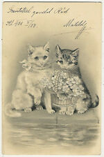 Cats, Cats Holding a Flower Basket, Beautiful Old Embossed Postcard 1901