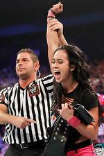 AJ Lee WWE Divas Title Win Photo #3