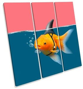 Goldfish Shark Fin Bathroom Print TREBLE CANVAS WALL ART Square Picture Pink
