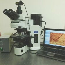 Olympus Bx51 Fluorescence Phase Contrast Microscope