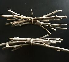 Organic Apple Wood Branches -Natural Pet Rabbit Guinea Pig Rat Chew Sticks Twigs