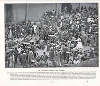1897 Vittoriano Stampa ~ Ortaggio Mercato Vecchio Calabar Africa Forti ( Testo