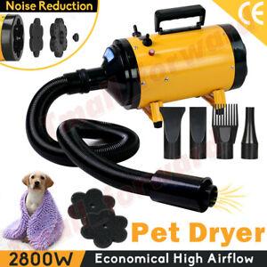 Dog Cat Hair Dryer Grooming Blow Speed Pet Hairdryer Blower Heater Blaster 2800W
