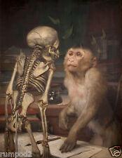 Vintage painting/poster/Gabriel von Max, Affe vor Skelett,Darwin/Monkey/Skeleton