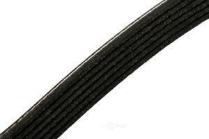 Serpentine Belt fits 1996-2000 GMC C2500,C3500,K2500,K3500 C2500 Suburban,K2500