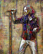 CHRIS ROBINSON OF THE BLACK CROWES 16x20in Poster, Black Crowes Free Shipping US