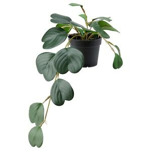 IKEA FEJKA Green Hanging Peperomia Plant Pot Artificial Potted Indoor/Outdoors