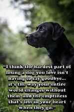 """Sentimental Labrador dog refrigerator magnet 2 1/2 X3 1/2 """""""