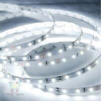 OTOE NICO Flexible Strip Light 5M Cool White 6000K 12V 2835 LED Waterproof