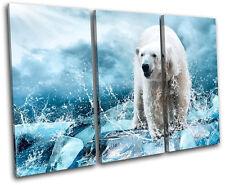 Polar Bear Animals TREBLE DOEK WALL ART foto afdrukken