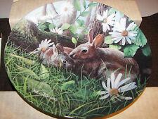 Encyclopedia Britannica The Rabbit Kevin Daniel 1987 Mib Coa