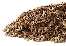 Cumin Seed Whole (Cuminum cyminum) Organic ~ 1 oz.