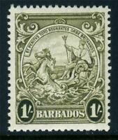 Barbados 1938 Badge of Colony 1' Olive Green MSCA Perf 13½x13 SG 255 MNH U984