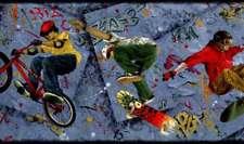 Extreme Sports BMX Skateboard Wallpaper Border Graffiti Boys Room Wall Decor