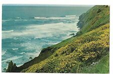 PRICKLY GORSE Dang'rous Deform'd Flower COWPER Coast OREGON Postcard OR