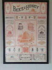 "Large Framed Cavallini & Co. Bees & Honey Poster 21"" x 29"""