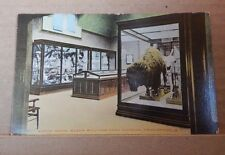 Postcard America North Room Roger Williams Museum Providence R.I  ,unposted