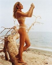 Ursula Andress 8x10 Foto lovely Foto 232695