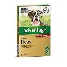 Advantage Red 6 Pack Large Dogs 10-25kg for fleas