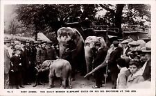 Regents Park. Baby Jumbo, Daily Mirror Elephant & His Big Brothers at Zoo # 2.