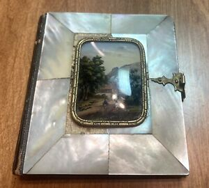 WOW!  A STUNNING ANTIQUE VICTORIAN VELVET PHOTO ALBUM w/ MOTHER OF PEARL COVERS