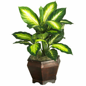 Golden Dieffenbachia W/Wood Vase Silk Plant Realistic Nearly Natural Home Decor