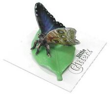 ➸ Little Critterz Insect Miniature Figurine Butterfly Blue Morpho Venus