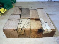 70-75MM SQUARES 7PCS LOT 774 ELM SPALTED BEECH WOODTURNING TIMBER BLANK