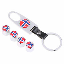 Fashion Norway National Flag Mesh Car Wheel Air Tire Valve Stem Cap for Benz VW