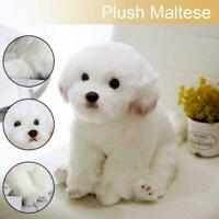 Cute Lifelike Realistic Maltese Dog Plush Toy Soft Gifts Kids 38cm Doll Y1S1